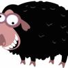 Дајте помоћ овцама!