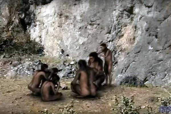 Петиција за протеривање Дарвинове теорије еволуције